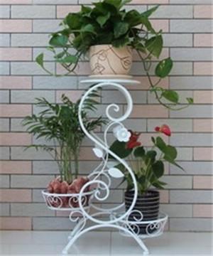 铁艺阳台花架